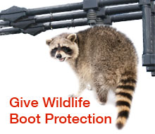 give wildlife boot protection